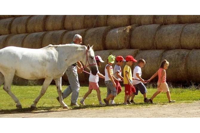 Il 13 e 14 settembre a Campacavallo divertitevi con il Circo in fattoria