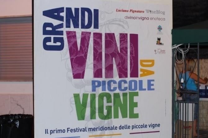 Castelvenere, 28/07/2009: Grandi Vini da Piccole Vigne