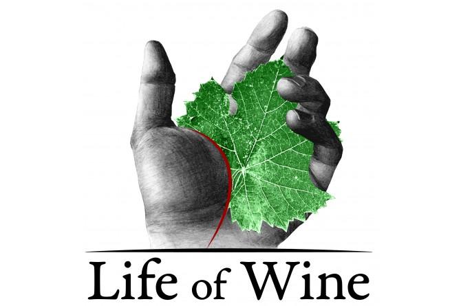 Life of Wine: domenica 16 novembre a Firenze viaggio nelle età del vino
