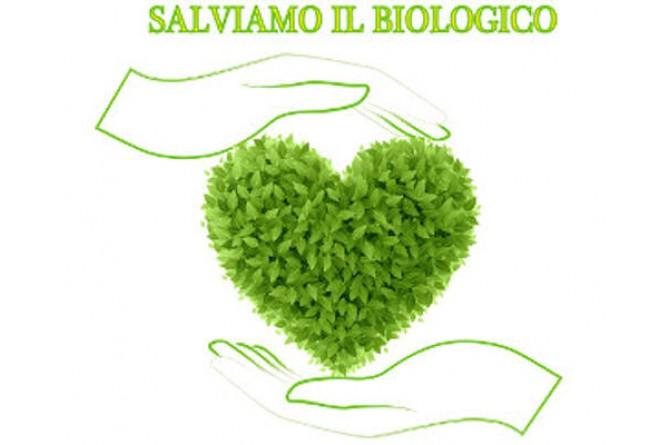 """Il 15 e 16 novembre vi aspetta """"Modena città del biologico e della vita rurale"""""""