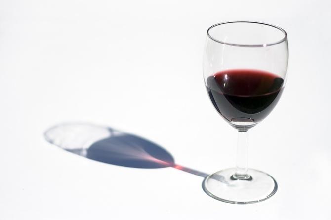 Il senso della vite: a Vicenza il vino è filosofia
