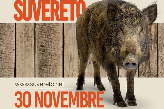 """A fine novembre a Suvereto vi aspetta la """"Sagra del Cinghiale"""""""