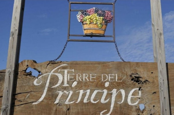 Terre del Principe e l 'avventura del Pallagrello: dai Borbone ai Tre Bicchieri