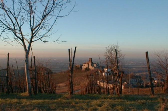 Tra Vino e Castelli - Passeggiata panoramica tra castelli nell'Oltrepo Pavese