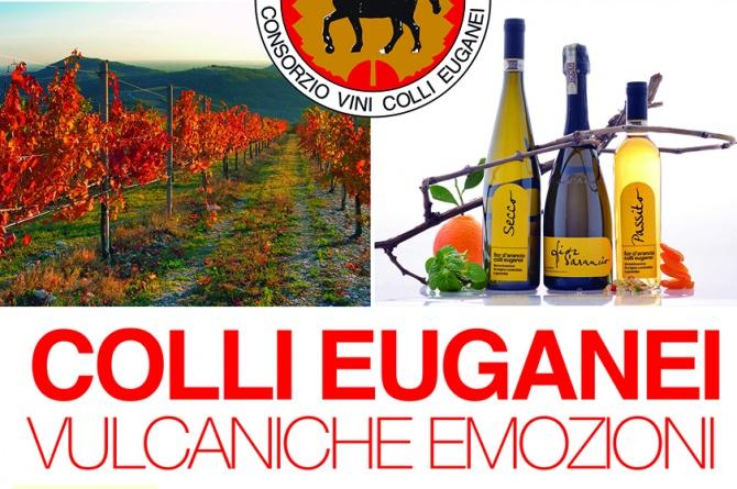 Vulcaniche emozioni: l'8 e 9 novembre i vini dei Colli Euganei saranno a Roma
